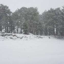 Enipnion Apartments Kakopetria At Troodos Mountains Snowing
